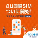 BIGLOBEモバイルのau回線「タイプA」の速度レビュー特徴・注意点まとめ【8月】
