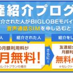 【終了】BIGLOBEモバイル 友達紹介プログラムの紹介コード。使い方と注意点まとめ