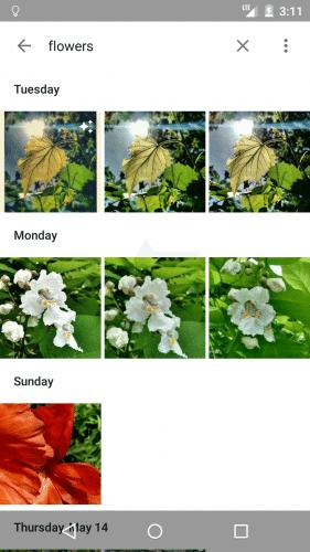 google-new-photo-app-leak2