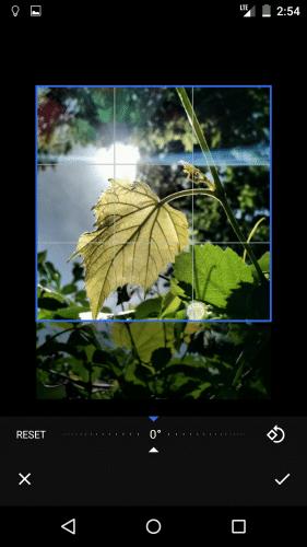 google-new-photo-app-leak7