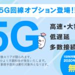 LinksMate(リンクスメイト)5G回線オプションの特徴と注意点 総まとめ。