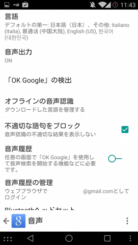 ok-google-multilingual9.1